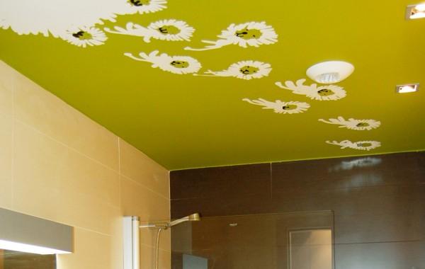 Baño con pintura decorativa